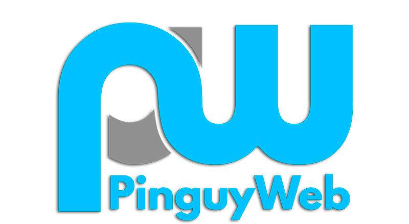 pinguyweb-agenzia-web-udine-trieste